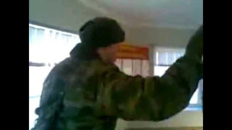Музыкальный лось в армии