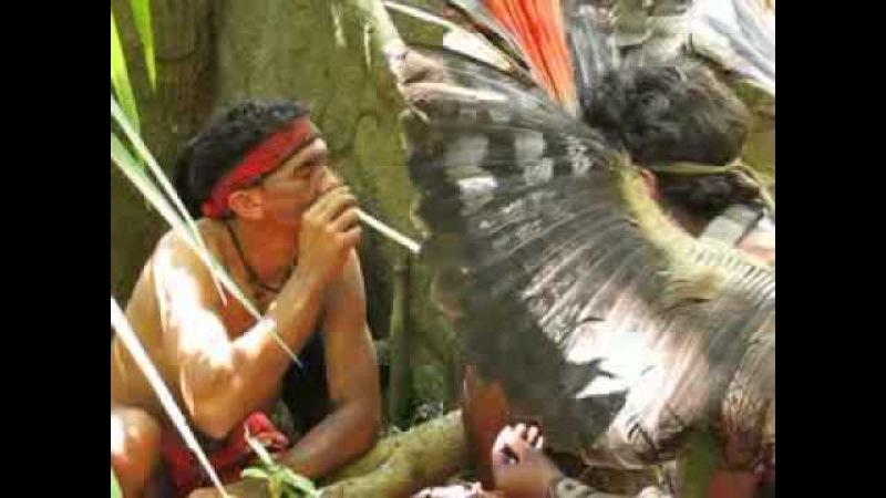 Shamans in the Brazilian Amazon taking Sacred Rapé Medicinal Snuff