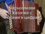 Черноглазая казачка с нотами в цифрах.