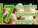 7 СПОСОБОВ ХРАНЕНИЯ ЧЕСНОКА!