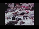 Уникальные кадры Берлин Июль 1945 года