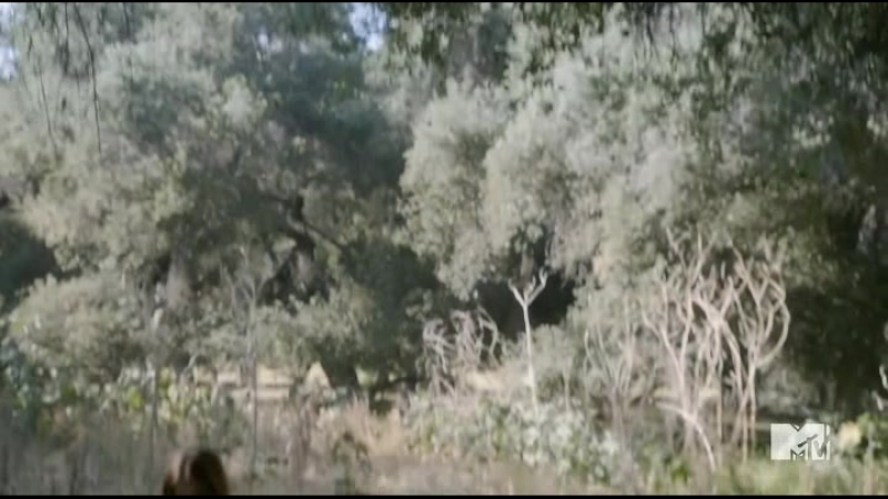 Волчонок 6 сезон 8 серия