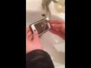 Айфон приймає душ