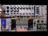 ORPHO ANALOG DRUM MACHINE I FLASH TRIGGER I 8 x16 Step Sequencer for EURORACK MODULAR