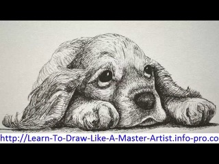 Learn To Draw, Pencil Drawings Of Nature, Drawing Lessons Step By Step, How To Pencil Draw