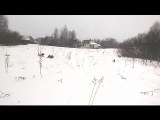 снежные гриффоны-2