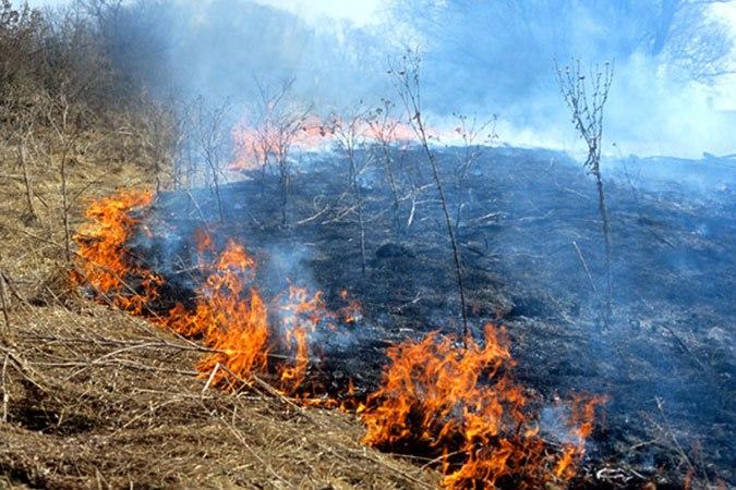 Региональное МЧС напоминает о соблюдении требований пожарной безопасности в весенний пожароопасный период!