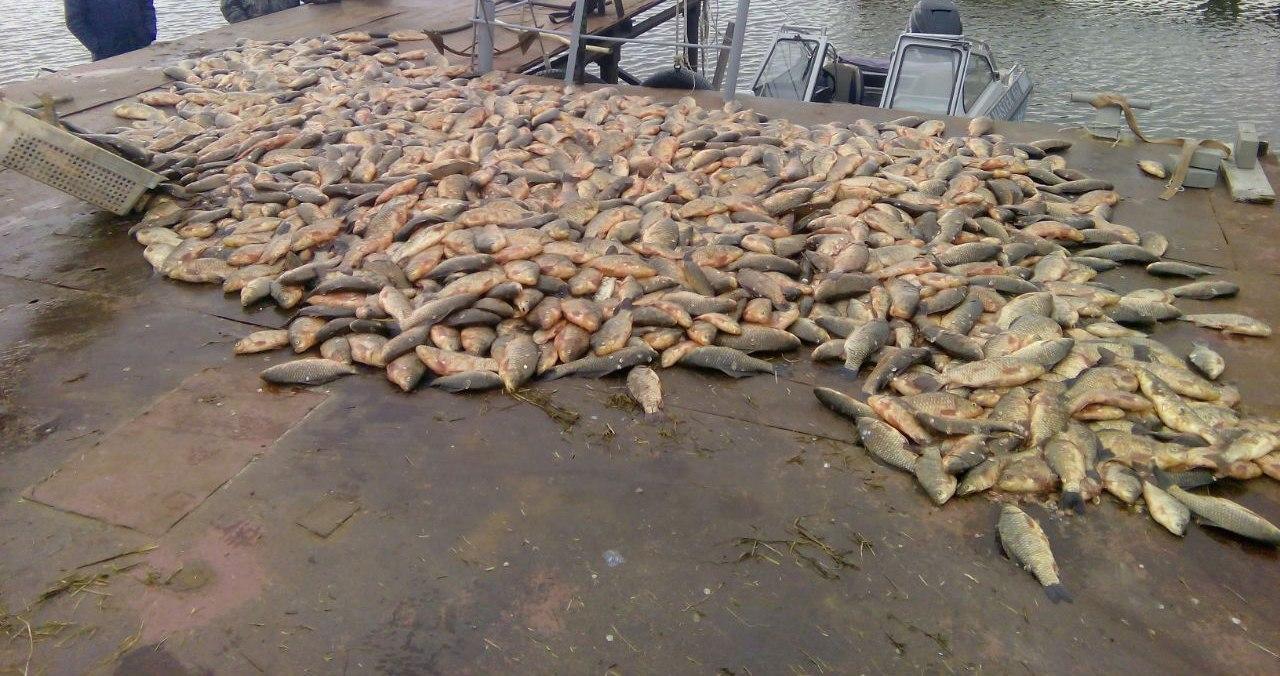 В Таганрогском заливе задержали браконьеров с тремя тоннами незаконно добытой рыбы