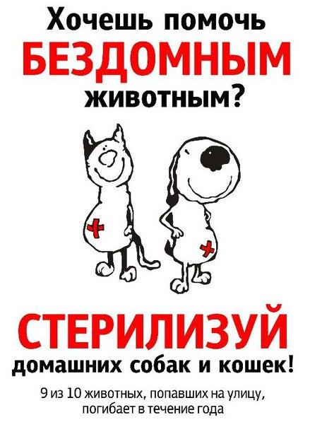 [id247929521 Оля] , КОШКУ СТЕРИЛИЗУЙТЕ!!!!!! ЗАЧЕМ ПЛОДИТЬ ДВОРНЮ??? И