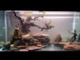 The Blue Lagoon. How to Decorate a Freshwater Aquarium. Aquascaping.