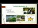 07 Строительство Живого Водоёма Как получить свой живой пруд и сэкономить до 50% б