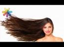 Как ускорить рост волос и сделать их гуще– Все буде добре. Выпуск 799 от 27.04.16