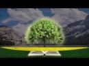 Роман Гирейло о Боге о расширении Сознания о построении образов о глубинном ясновидении об эталонных системах которые видит Отец