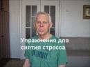 Упражнения для снятия стресса Alexander Zakurdaev