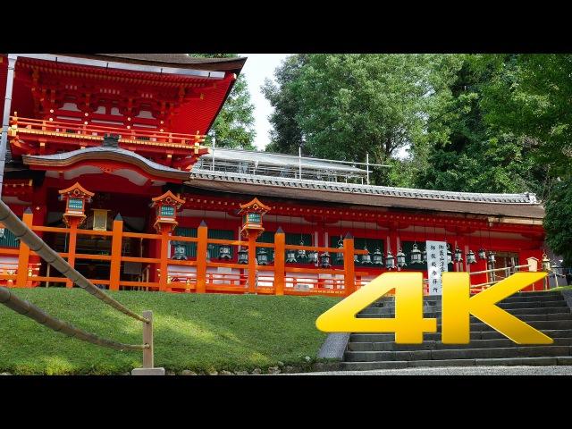 Kasuga-taisha - Nara - 春日大社 - 4K Ultra HD