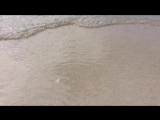 Остров Саона. Тут снимали рекламу баунти.