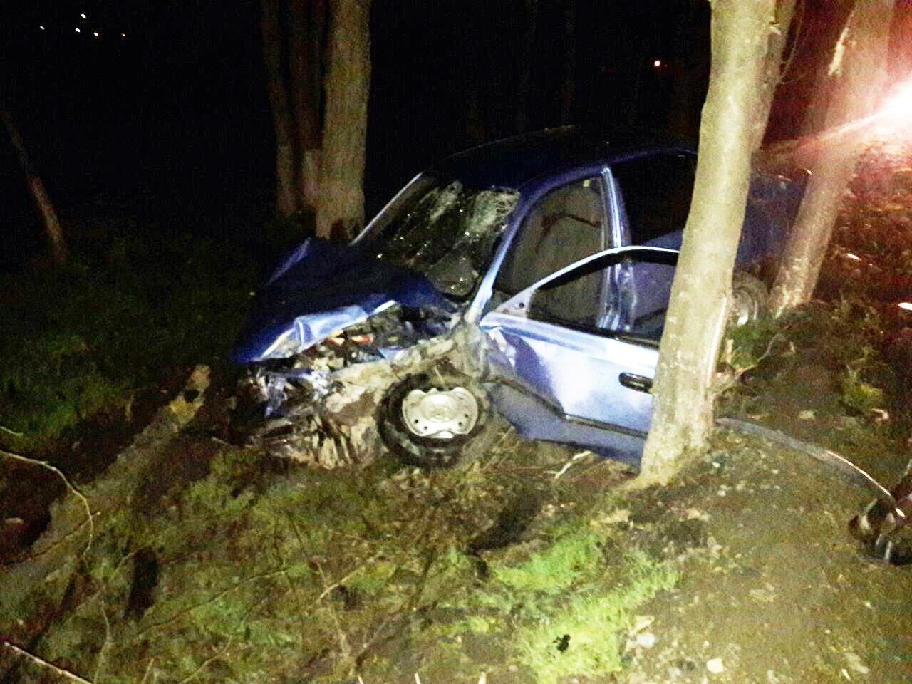 Под Таганрогом автоледи на Hyundai Accent слетела с дороги и врезалась в дерево