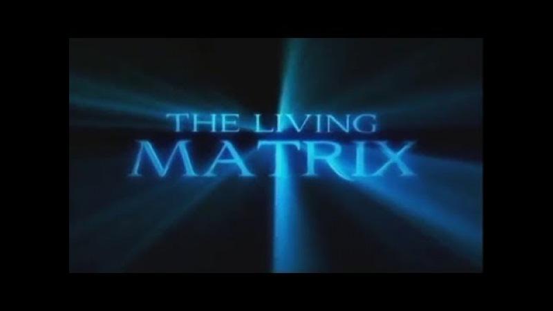 Живая матрица исцеления Запрещен для телевидения