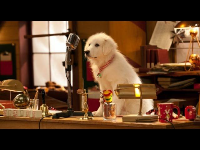 Видео к фильму «Санта Лапус 2: Санта лапушки» (2012): DVD-трейлер
