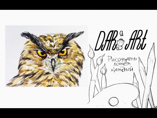 Для начинающих! Как нарисовать сову акварелью! Dari_Art рисоватьМОЖЕТкаждый