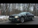 Ford Mustang Софьи Темниковой