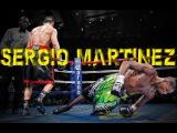Sergio Martinez Highlights ( Greatest Hits ) 2017 sergio martinez highlights ( greatest hits ) 2017