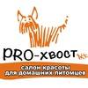 Зоосалон PRO-хвост. Стрижка собак, кошек. Брянск