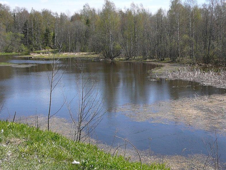 малые реки весной рыбалка поплавочная и донная снасть