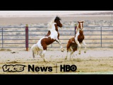 For Wild Horses, It's Ride Or Die: VICE News Tonight on HBO (Full Segment)