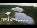 These Geodesic Domes Are Home to The World's Largest Greenhouse