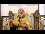 Проповедь на Новогоднем молебне 31 12 2016 прот.  Александр Борисов