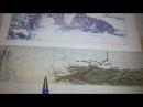 Бенгальские тигры. Отчет№ 2. СП Больше, чем просто большая от Лилии Букет