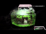 The Art of the Planted Aquarium 2015 - Scapers Tank (Nano) category, part 2