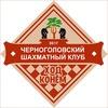 """Черноголовский шахматный клуб """"Ход Конём"""""""
