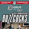 The Buzzcocks   30 ноября   Питер, Космонавт