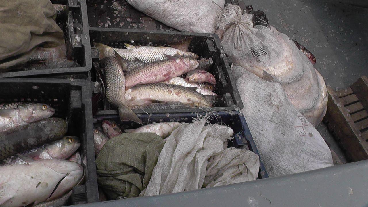 В Таганрогском заливе сотрудники погрануправления ФСБ задержали браконьеров
