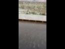 У нас в Картахене спустя 78лет вновь выпал снег... Большая радость для сибирячки живущей среди пальм😀😀😀