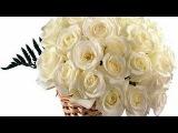 Плачьте белые розы Arkadias