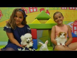 Sema ve Ayça evsiz hayvanlara kulüp kuruyorlar. Evcil hayvanlara bakım oyunu. Kız oyunları