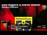 Gary Maguire &amp Stereo Wildlife - Always Different (Original Mix)