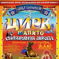 "Логотип Цирк-шапито ""Серебряная Звезда"""