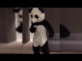 Man United legend Patrice Evra dresses up as a panda to fight racism in awesome