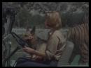 Daktari 2 04 Джуди в смертельной опасности
