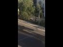 Драка у Бодливой козы: девушки против парней. 01.07.2017. ЯКУТСК