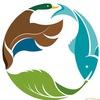 Индустрия охоты, рыбалки и активного отдыха