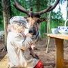 Трогательный зоопарк Оленей