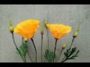 ABC TV | How To Make California Poppy Paper Flowers From Crepe Paper - Craft Tutorial