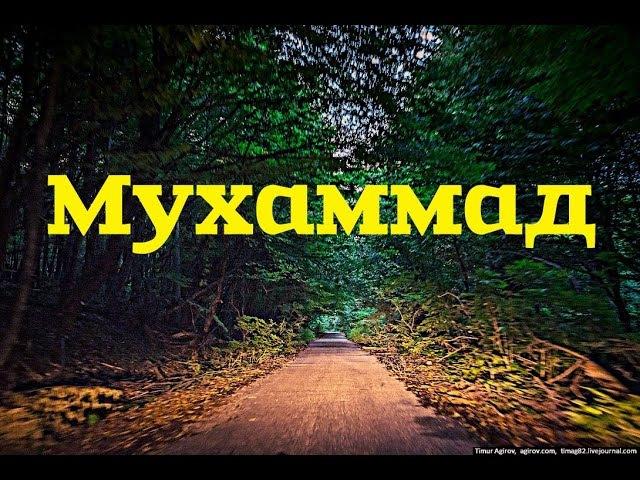 Нашид на Кабардинском языке. (ПРЕМЬЕРА КЛИПА!)
