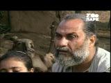 Эхо джунглей 11 серия. Лев Гир  Последнее Убежище  Echoes from the Jungle (2006)