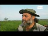 Эхо джунглей 7 серия. Индийский Носорог Рино  Echoes from the Jungle (2006)